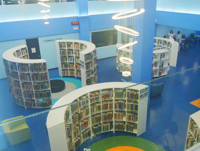 DMSF world class library